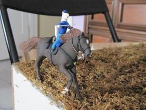 IMG_0410 1st horse on!